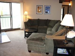 TH207F Super Condo w/Wifi, Clubhouse, Fireplace, King Bed - Silverthorne vacation rentals