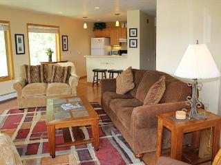 WH216 Attractive Condo w/Great Views, Wifi, Fireplace, Common Hot Tub - Silverthorne vacation rentals