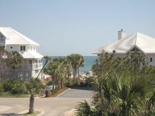 Escape Cold:  January 22-29 - $700! March 4-11-$1290, 11-18 & 18-25 - $1630!!! - Saint George Island vacation rentals