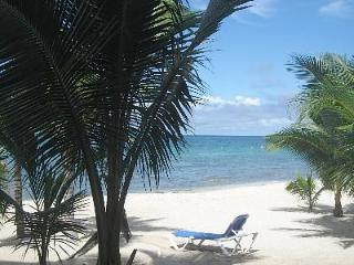 Villa Vista Del Mar...3 steps onto the beach! - Cozumel vacation rentals