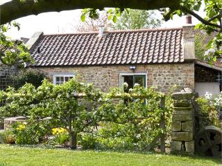 THE SUN HOUSE, romantic, luxury holiday cottage, with a garden in Ferrensby, Ref 5251 - North Yorkshire vacation rentals