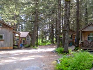 Millane's Serenity by the Sea Bear Glacier Cabin 1 - Seward vacation rentals