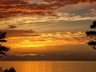 SeaView Cottage on Whidbey Island - Whidbey Island vacation rentals