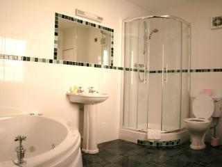 Cozy 2 bedroom Apartment in Dublin with Internet Access - Dublin vacation rentals