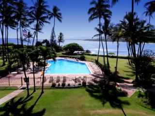 Ground floor, ocean view, 30 seconds to our beach - Kapaa vacation rentals