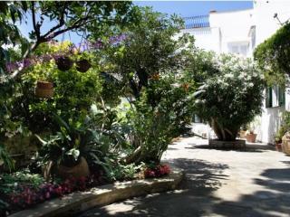 VILLA REBECCA - CAPRI ISLAND - Capri - Capri vacation rentals