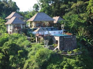 Amori Villas: Luxury Ubud Retreat - Ubud vacation rentals