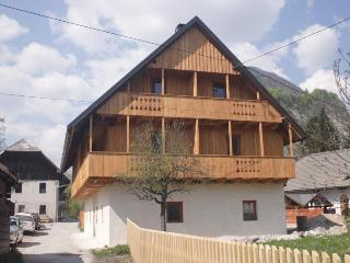 Perfect Alpine getaway-luxury apartment-sleeps 6 - Slovenia vacation rentals