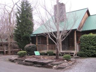 Tennessee Iris Lodge #54 - Sevierville vacation rentals