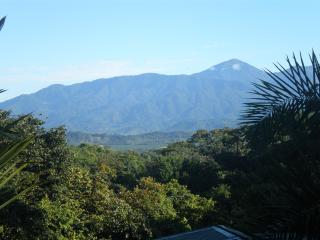 The Family Jungle House - Quepos vacation rentals
