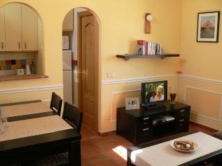 Beautiful 1 bed apartment 10 mins walk from Sol - Madrid vacation rentals