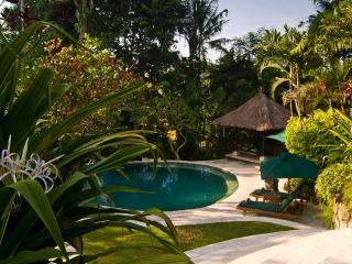 Villa Bougainvillea 3-bdrm Canggu Bali Riverside - Pererenan vacation rentals