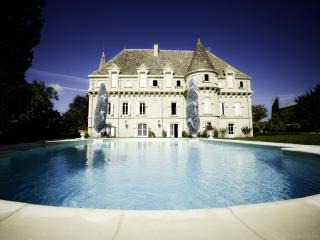 Luxury Chateau: 8 bedrooms, private pool & tennis - Saint-Antoine-de-Ficalba vacation rentals