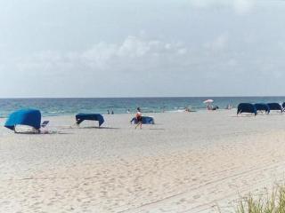 New Home - Best Location - Walk to Beach - Boca Raton vacation rentals
