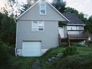 Nice 4 bedroom House in Oneonta - Oneonta vacation rentals