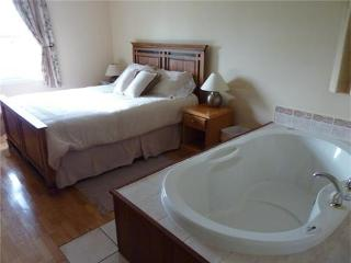Dreamweavers deluxe 2 bedroom cottage with double air massage tub, great views - Rustico vacation rentals