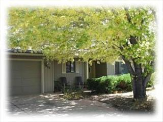 view of the front yard in the summer - Peak View Street 3 Bedroom Cottage - Flagstaff - rentals