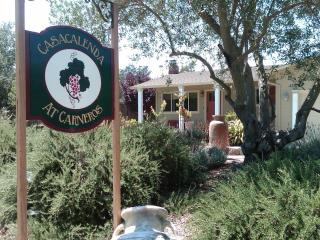 Sonoma wine country home - Casacalenda at Carneros - Sonoma vacation rentals