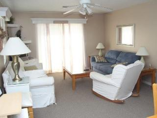 4 Steps to the Sand-Excellent Reviews & Condition! - Amelia Island vacation rentals