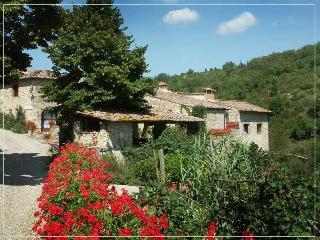 Authentic 4BR farmhouse - Castellina In Chianti vacation rentals
