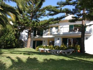 Villa Echium, Your holiday home i Madeira - Funchal vacation rentals