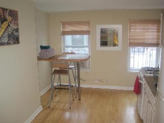 HEART OF THE EAST VILLAGE with COURTYARD - New York City vacation rentals