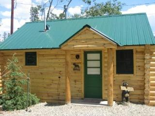 Cozy 1 bedroom Cabin in Winter Park - Winter Park vacation rentals