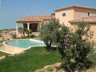 beautiful house for rent with fantastic view - Goudargues vacation rentals