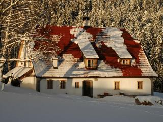 Countryhouse Hinterbreiteneben - Lower Austria vacation rentals