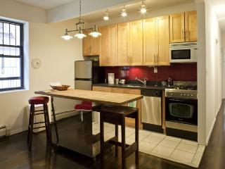 Stay at The Brooklyn Apartment!  Great location! - Brooklyn vacation rentals