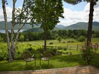 White Birches - Chittenden vacation rentals