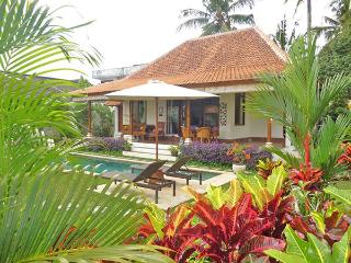 Villa Damai - Private open living villa w/ pool - Ubud vacation rentals