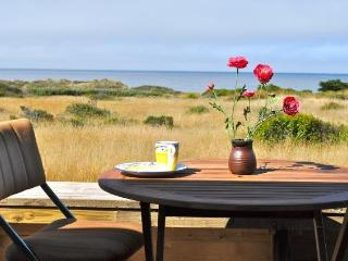 Casa Pacis (House of Peace) -- Superb Ocean Views - The Sea Ranch vacation rentals