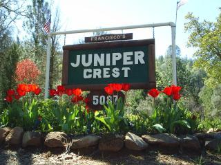 Yosemite JuniperCrest Vacation Apartment - Midpines vacation rentals