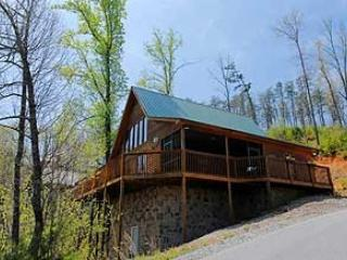 BLACK BEAR LODGE - Image 1 - Sevierville - rentals