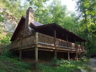 Big Rock Log Cabin - Slade vacation rentals