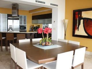 Molina de Agua 908 - Puerto Vallarta vacation rentals