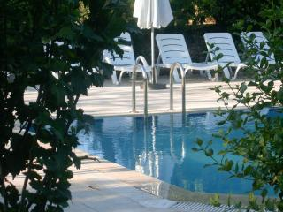 The Fig Garden Cottages / Fig Cottage - Kayakoy vacation rentals