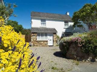 Pet Friendly Holiday Home - Tyr Winllan, Newport - Newport vacation rentals