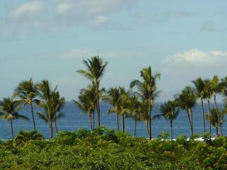 Ekahi-2A Lower Village, Ocean Views and Sunsets - Wailea vacation rentals