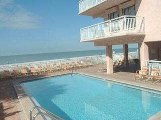 Spectacular Gulfview: 1-bedroom/1-bath Condo - Indian Shores vacation rentals
