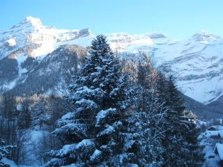 A6 Le Rocher Les Diablerets Switzerland - Gsteig vacation rentals