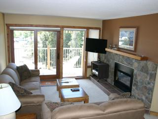 Updated - Near Downtown-SKI-in-Great Winter Rates! - Breckenridge vacation rentals