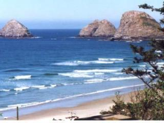 Special Occasion Home for a couple (s) or families - Oceanside vacation rentals