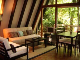 Cottage on the Creek/Nestled Under RedwoodsCO00370 - Felton vacation rentals