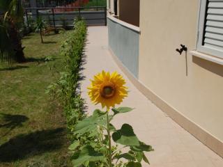 One bedroom ground floor apartment in Caulonia - Caulonia vacation rentals