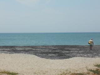 Coronado Beach Beauty - Panama - Coronado vacation rentals