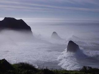 Spectacular Ocean Front Rental on Mendocino Coast - Mendocino vacation rentals