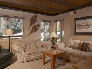 WILLOWS B3 - Snowmass Village vacation rentals