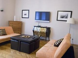 Danube View, Downtown, great prices, WIFI - Budapest vacation rentals